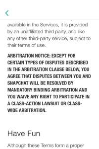Screenshot from Snapchat's terms of use